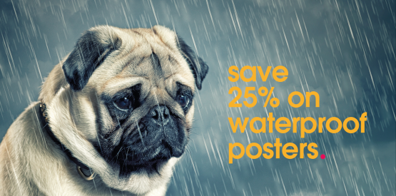 http://kaizenprint.co.uk/waterproof-posters