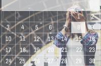 Picture Perfect Calendars